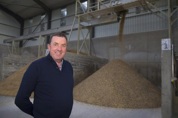 Zurich Farm Insurance/Farming Independent Tillage Farmer of the Year John Cullen at the Cullen Grain premises in Ballymurn, Co Wexford. Photo: Patrick Browne