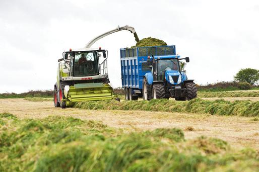 Can you afford not to grow an extra tonne of grass?