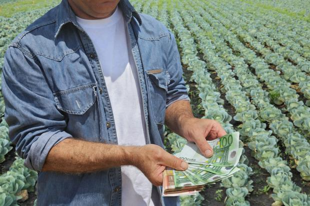 Farmers who are seeing profits grow, could save thousands by averaging their farm profits for tax purposes