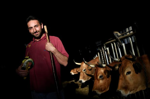 Cattle breeder Pablo Pato poses inside his stable in Llanuces, Spain. REUTERS/Eloy Alonso
