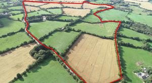 A view of the main lot, located at Kilcotty, 6.5km from Enniscorthy