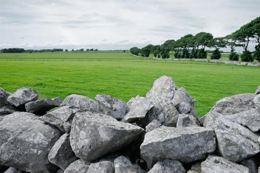 Under the current scheme, over 95,000 farmers will receive total payments of €250m in 2019