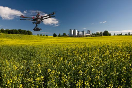 A drone operating on a farm.