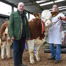 Norman Robson, judge, with Keith Jagoe, Toughmacdermody, Drinagh, Co Cork and his Champion Heifer, Dermody Joyce which sold for €2,300.