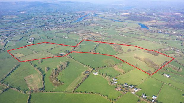 Known as 'The Deerpark', the 140ac holding is located at Clonlara, Co Clare