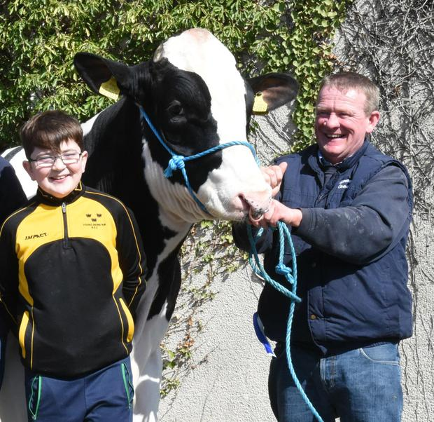 Bill and Paul Hannan, Crecora, Co Limerick with the Honourable Mention winner, Lisnalty Silver at the IHFA Show and Sale at Nenagh Mart.