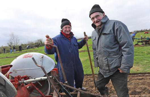 Cousins David Cassidy and Ralph Foster from Ballyconnell, Co. Cavan at the County Longford Ploughing Championships. Photo: Lorraine Teevan