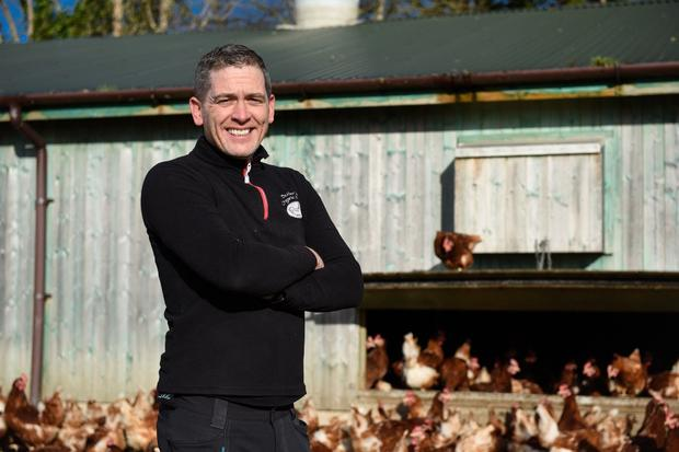 David Butler is producing 14,400 eggs a week on his organic enterprise in Carlow