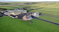 The residential stud farm is located in Castleshane, close to Adare and Croagh