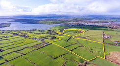 A 42ac farm at Rath close to Baltimore is for sale in four lots with a guide price of €10,000 to €12,000/ac