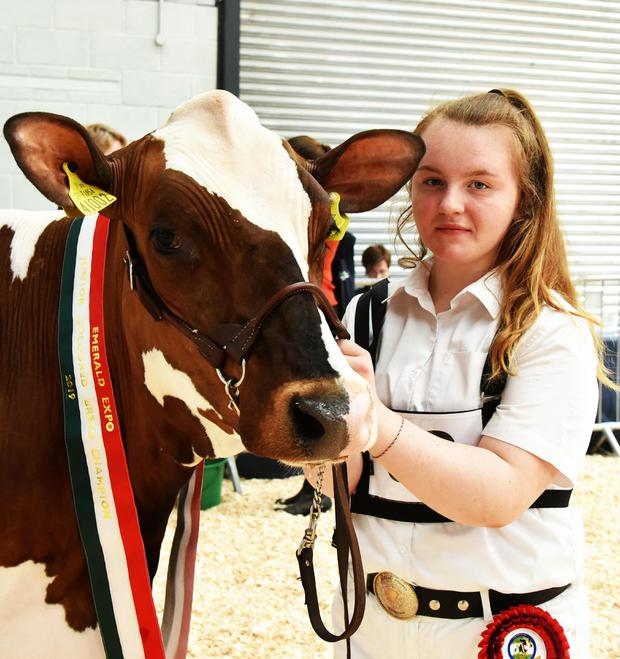 Threemile Mandella Pam, the Reserve Coloured Breed Junior Champion with Holly Keenan from Corretard, Threemilehouse, Co Monaghan