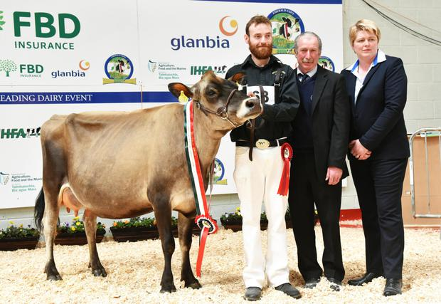 Coloured Breed Champion Mullaghlands Pride Starlight, exhibited by Edwin and Pat Gaynor from Mullaghlands, Mullagh, Co Cavan with President IHFA Peter Kenneally and judge Helen Herd.