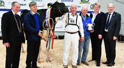 Cyril and John Dowling from Baldonnel, Co Dublin with Baldonnel FM Sunshine EX90, crowned Supreme Champion, and the Glanbia Exhibitor Bred Champion, with President IHFA Peter Kenneally, Peter Ging from the IHFA, judge Helen Herd and CE of the IHFA Charles Gallagher