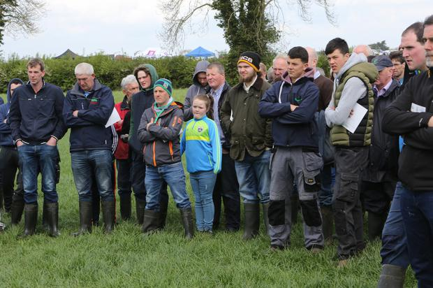 Some of the farmers and their families at the open day on the Starview Farm in Co Limerick. Photo: O'Gorman Photography