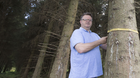 Pat Hennessey measures the volume of a 28-year-old Sitka spruce on his land in Ballaghmore, Co Laois. Photo: Alf Harvey