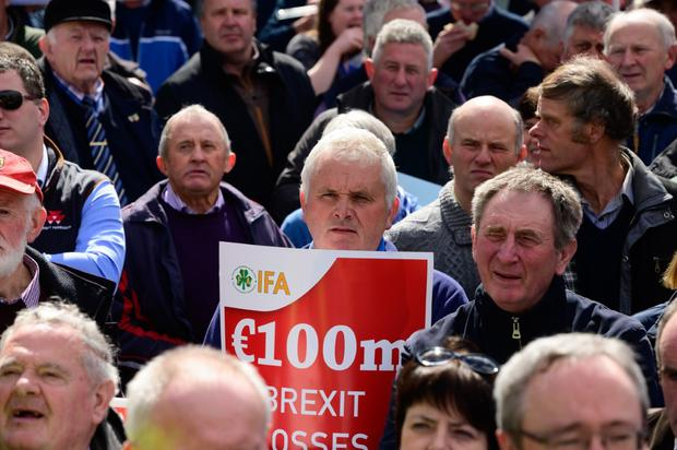 Clare farmer Seamus O'Grady at the IFA beef protest in City Hall, Cork last week