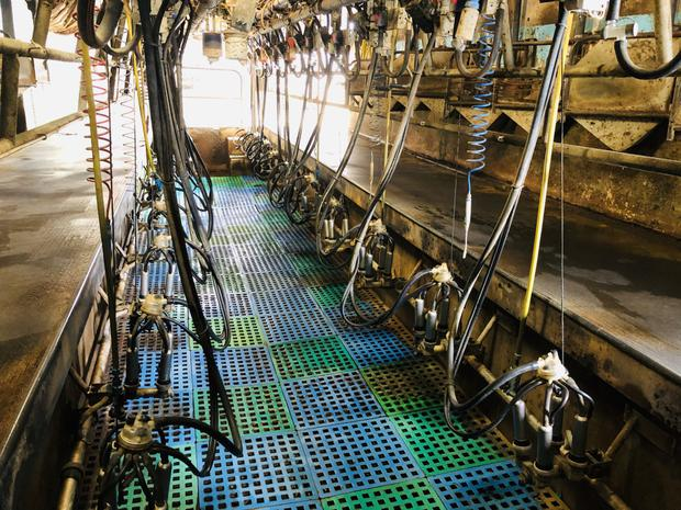 The DeLeval 20-unit parlour sold for €10,000