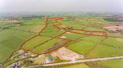 The holding comes to auction in an executor sale with a guide price of €12,000/ac