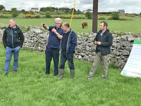 Teagasc Specialist Damien Costello, host farmer John Curley, and Teagasc Roscommon's Brian Daly and Michael Conroy.