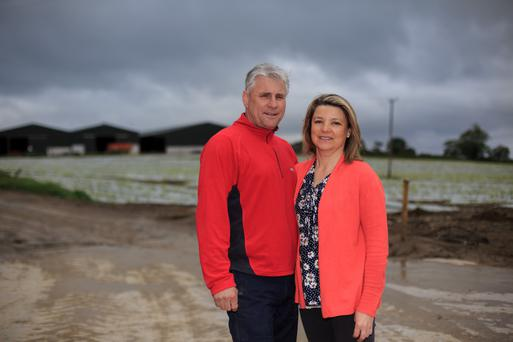 Ivan Curran and his wife Frances at Broadleas Farm, Stamullen, Co Meath. Photo by Mark Condren