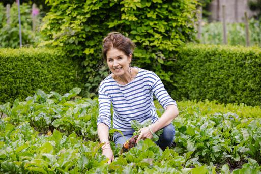 Farm to fork: Susan O'Sullivan has built her award-winning cafe business around meat and veg grown on the family farm in Enfield