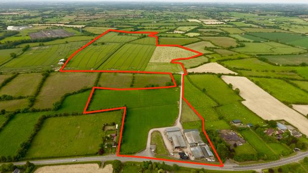 Good breeding: The farm at Pelletstown was developed by farmer, beef processor and scientist Dr Roger McCarrick, who built up a top class pedigree Limousin herd on the Co Meath farm