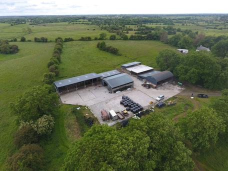 Keen interest: The yard is made up of modern and revamped sheds and a lots of pens and storage spaces
