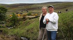 Mountain farming: Will Condon pictured with his wife Eileen on their farm at Ballymacarbry, which is located in the foothills of the Knockmealdown Mountains, Co Waterford