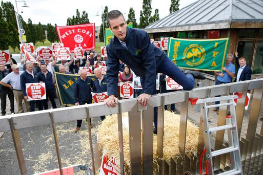IFA president Joe Healy leads the way during last week's IFA protest at the EU Food & Veterinary Offices in Grange, Co. Meath PHOTO: KENNETH O'HALLORAN