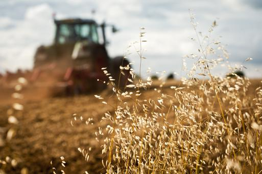 Of the 61 people who died in tractor deaths in the last decade, 28 were aged 65 or over. .