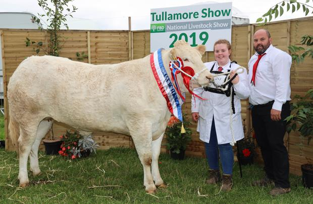 The Blonde d'Aquitaine champion with handler Maria Cronin and owner Michael Creed from Inchigeela, Co Cork at Tullamore Show. Photograph: Alf Harvey