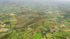 Lots of options: The 186ac residential farm at Carrowmore, close to Bohola village, will be offered for sale in four lots when it goes to auction next month