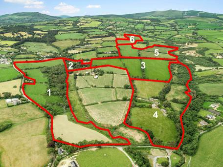 Green vista: The land at the farm located in Ballyconlore and Coolnagloose is described as being high quality grazing and tillage ground and is guided at prices ranging from €7,000 to close to €12,000 per acre