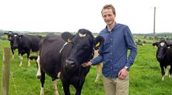 Banking on milk: In the last four years, Nigel Daunt has converted the family's suckler beef holding into a dairy operation which is now milking 68 cows