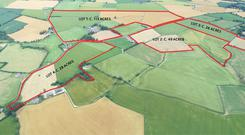 Model farm: The 216ac farm is close to Bunclody and sold in lots at auction for a total price of €3.05m. The 25.6ac lot was bought for €350,000 by Kilrush-Askamore GAA club