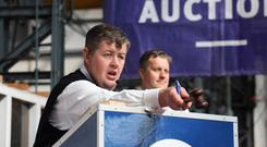 auctioneer Gareth Wilson closes a sale.