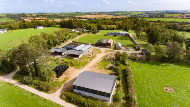 The sale includes a modern bungalow and outbuildings that can house up to 200 cattle.