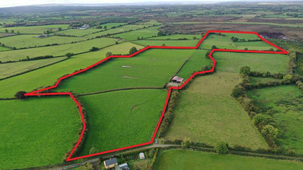 Neat and tidy: The land at Ballylina East has been farmed as an outfarm by a careful owner for many years