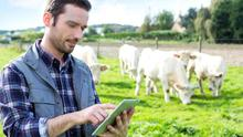 Doing the sums: to qualify for Consanquinity Relief, the person farming the land must farm the land for at least half of their normal working time or be the holder (or become the holder within four years) of one of the young trained farmer agricultural qualifications.