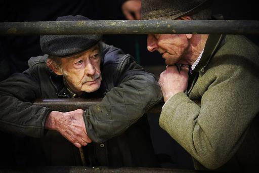 Old pals Brendan Tully and Paddy Curran discuss the art of selling at Ballyjamesduff Mart, Cavan on Tuesday afternoon. Photo: Lorraine Teevan