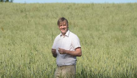 Nigel Renaghan pictured in his first 14ac crop of organic wheat in Clontibret, Co Monaghan. Photos: Seamus Farrelly