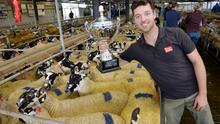 John Morahan, Kilmaine with the Cormac cup winner of the champion Mule hoggets of the show at Ballinrobe Mart. Photo: Ray Ryan