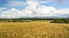 The farm is located at Killylane near Eglinton and overlooks Lough Foyle
