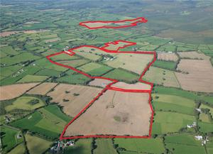 Graigue Farm is located between Mallow and Mitchelstown; the 298ac holding is guided at €2.5m