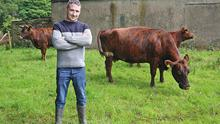 Darren McLoughlin pictured on his farm outside Gorteen, Co. Leitrim with his Bo Riabhach cattle Bo, Dilly and Magic.  Photo: Lorraine Teevan