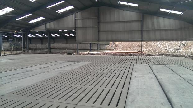 Substantial grants are available from the TAMS scheme for farms buildings such as slatted houses.