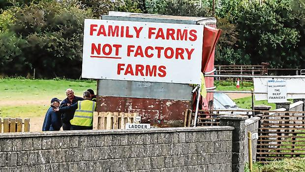 Protest: Farmers picketing outside Dawn Meats plant in Grannagh. Photo: Eamonn Farrell