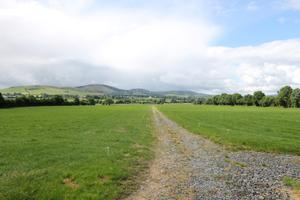 The farm for sale at Ballinamona, Co Tipperary is serviced by an internal roadway