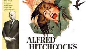 Sinister: In Alfred Hitchcock's The Birds, everyday birds attempt to take over the world