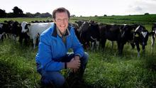 Mutual benefits: Darragh McCullough is in a dairy partnership with a neighbour